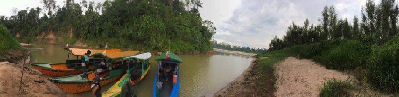 selva-peru-tampopata-tips-viajes